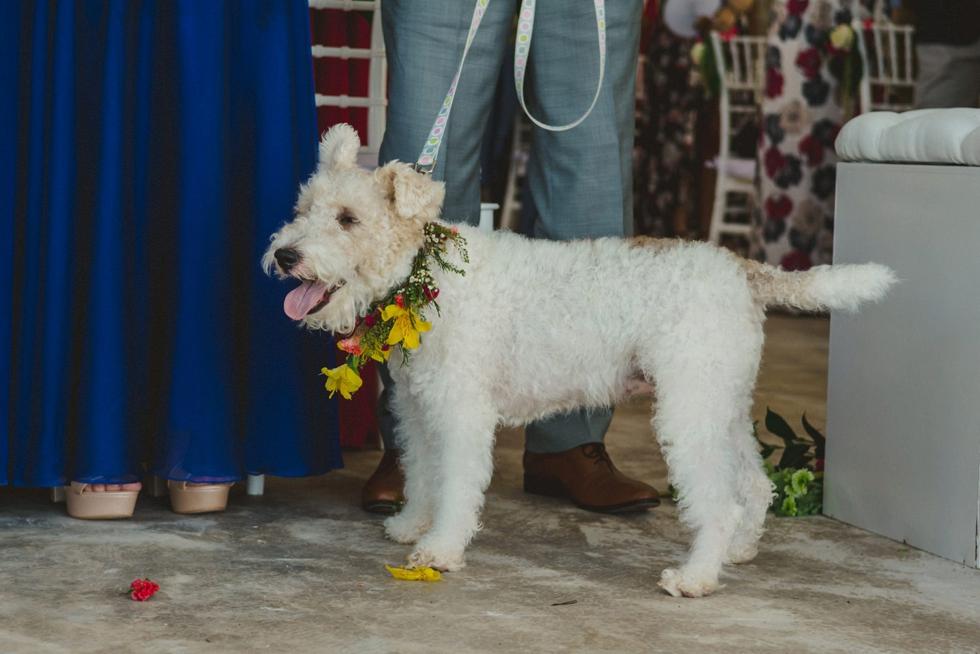 weddingdreams-fotografos_profesionales_de_bodas_1132.jpg
